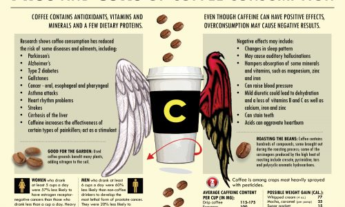Pros and Cons of Coffee Consumption Infographic