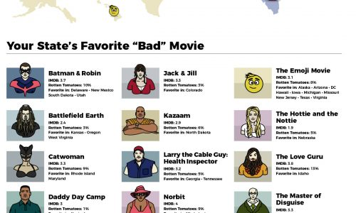Every state's favorite bad movie